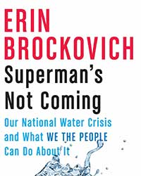 Cover image of Erin Brockovich's Superman's Not Coming